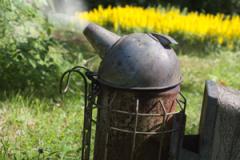 En puff med rök lugnar bina